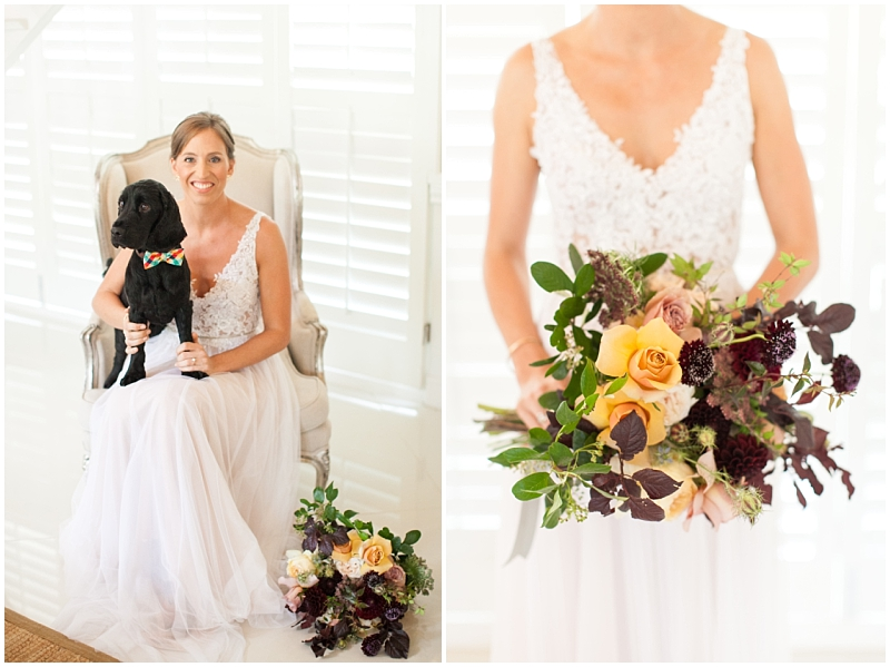 bride and dog portraits