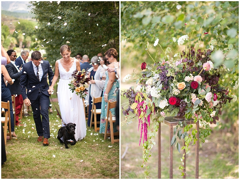 wedding ceremony with dogs
