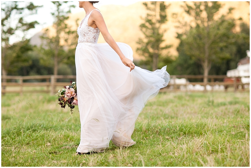 bridal portraits in the winelands